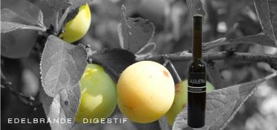 Obst, Mirabelle, Augustinus